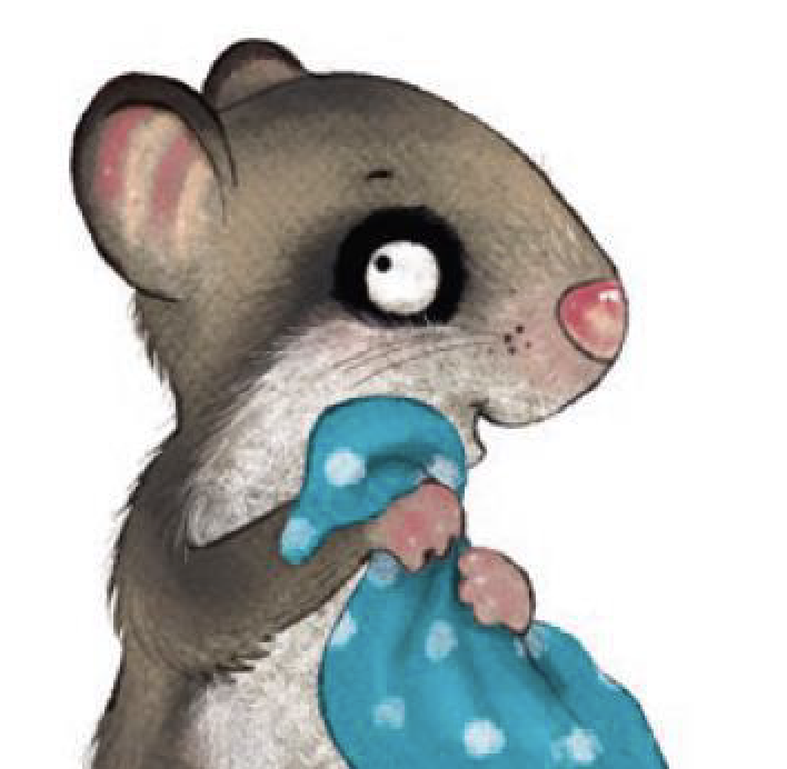 The Little Dormouse – Picture Book Bestseller!